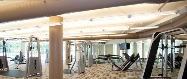 Vizcayne Gym 2
