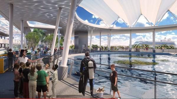 Miami Museum of Science aquarium top